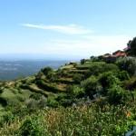 Vista de Carvalhinho