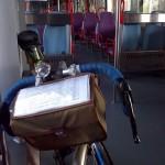 Bicicleta no Comboio